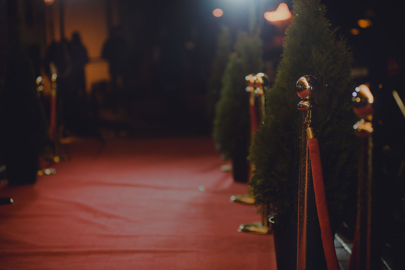 VEGAS Pro at Beverly Hills Film Festival red carpet